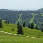 Ant Feldberg kalno