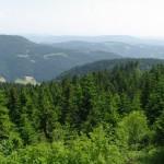 Nuo Hornisgrinde kalno