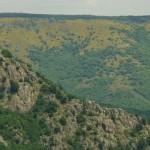 Chassezac kanjonas