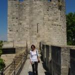 ant gynybinės Aigues-Mortes sienos