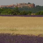 Roussillon nuo levandų pievų