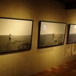 Annecy pilis ir dar kita paroda joje